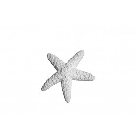 Stampo in gomma per il gesso di una stella marina Pr 194 cm.15.5